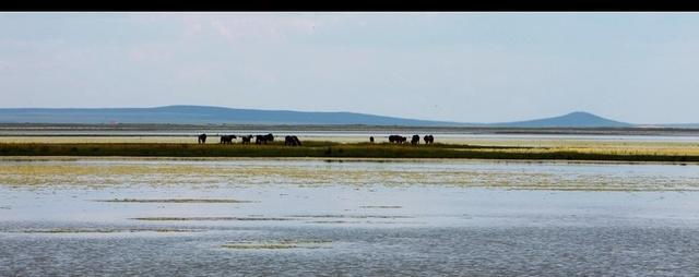 中國十大最美湖泊,有沒有一個在你的家鄉 - 每日頭條