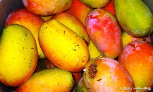 為什麼我要去巴基斯坦買芒果 - 每日頭條