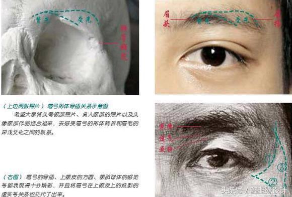 手把手教你畫五官-素描眼睛的畫法、對新手有幫助哦! - 每日頭條
