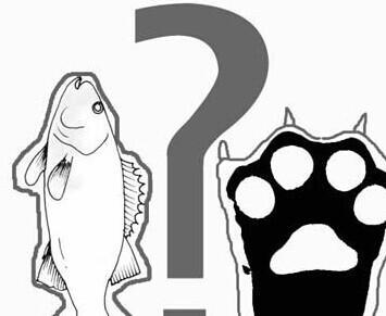 為何魚和熊掌不可兼得 - 每日頭條