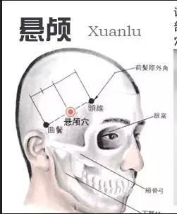 養生穴位圖位置和功效(十四)懸顱穴,頭維穴主治偏頭痛,高血壓 - 每日頭條