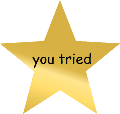 Image result for gold star saying you tried