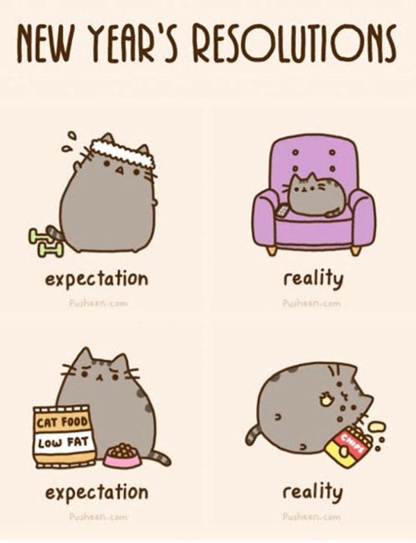 Image result for pusheen new year gif