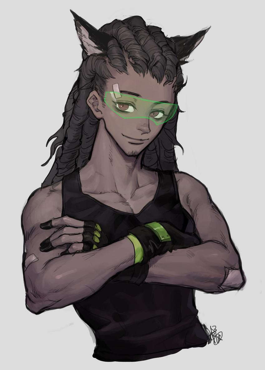 Kemonomimi Lucio  Overwatch  Know Your Meme