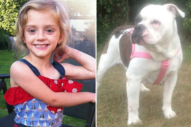 Lexi Branson, killed by Dog | ozara gossip