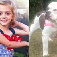 Lexi Branson - 4 years old girl attacked on the throat and killed by Dog