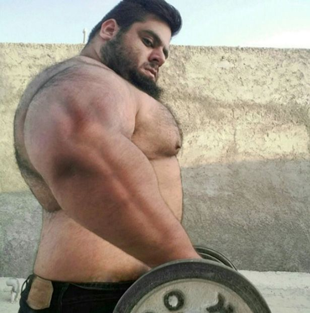 Sajad Gharibi, 24, who is known as the Persian Hercules online, weighs an enormous 24 stone, almost all of which is muscle