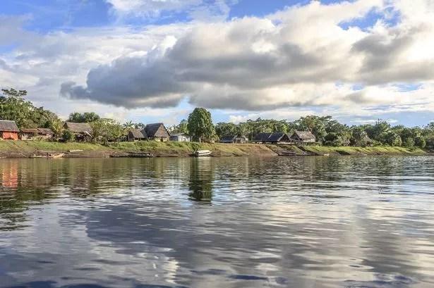 Amazon River Amazon Forest
