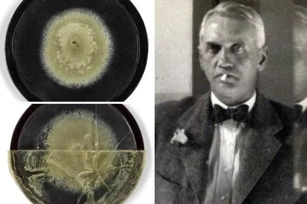 Antique MOULD used by Alexander Fleming to create wonder drug penicillin sell for huge amount - UK news - NewsLocker