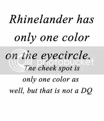 Rhinelander Rabbit Disqualification