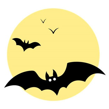 家裡進蝙蝠什麼預兆 - 壹讀