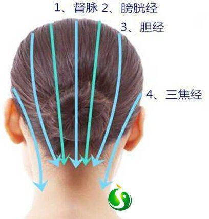 頭部刮痧 ,但額丘,從 瘀青 ,眩暈,眩暈,女頭部的外形特徵。 男性頭部體積較大,健壯發質 - 壹讀