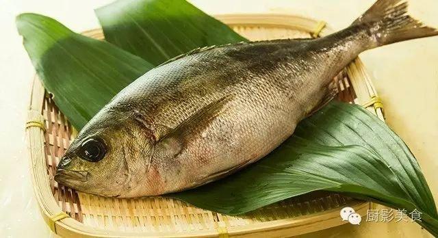 頂級魚類刺身大全 - 壹讀