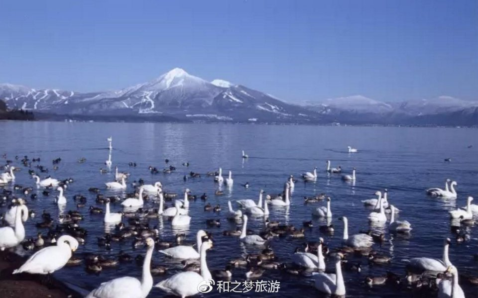 其實日本挺好玩的。出發啦! 感受地獄式的湖和天堂式的溫泉! - 壹讀