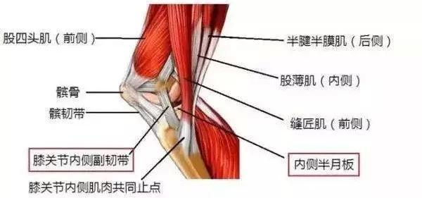 怎樣做可以跟膝關節疼說拜拜? - 壹讀