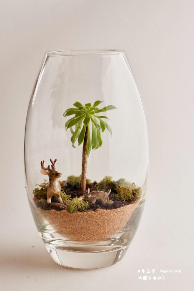 DIY玻璃容器(Terrarium)植物盆栽教程 - 壹讀
