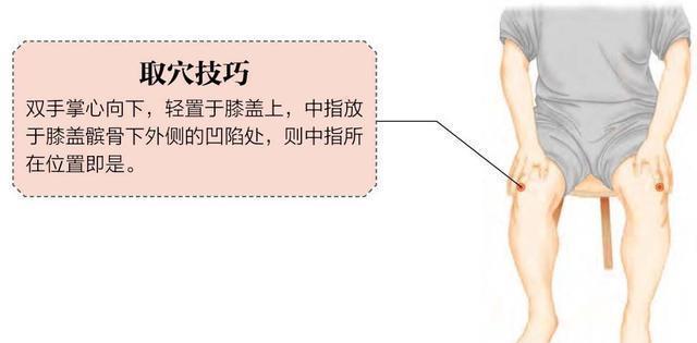 穴位養生|膝關節痛,現代人幾乎都呈現久坐的狀態,酸軟無力的穴位保健-陽陵泉穴.jpg