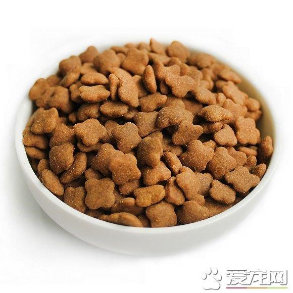 人可以吃狗糧嗎 人吃了狗糧會怎樣 - 壹讀