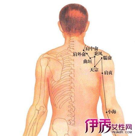 背部簡單穴位有哪些 按摩穴位可以治療疾病 - 壹讀