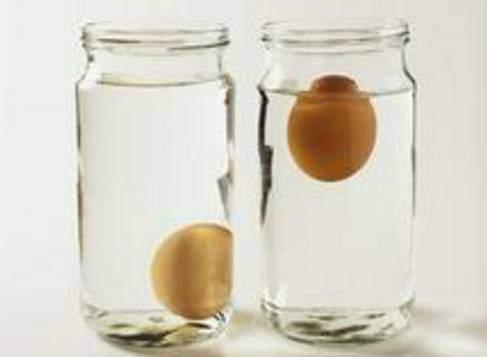 雞蛋是母雞的月經嗎?用顏色能判斷雞蛋營養嗎? - 壹讀