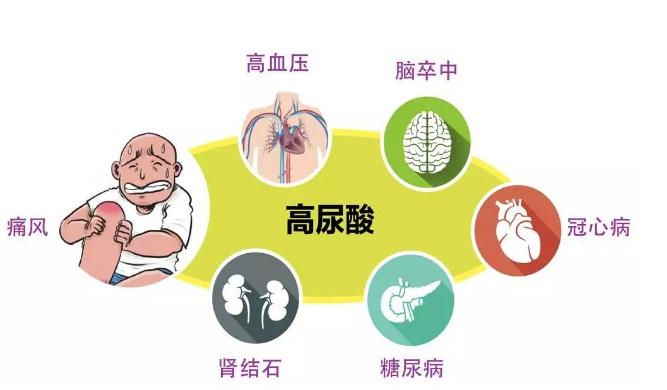 年紀輕輕尿酸過高引起痛風?醫生:尿酸高的控制非常重要! - 壹讀
