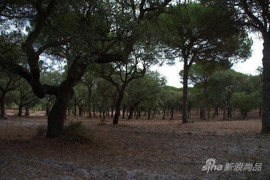 葡萄牙酒莊之旅:塞圖巴爾半島_尚品頻道_新浪網