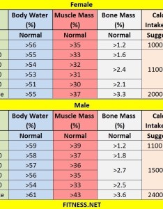 Everything about muscle mass percentage with charts fitness sports also bone chart frodo fullring rh