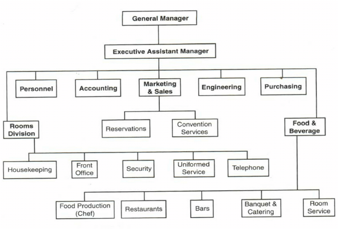 Pertemuan example of  small hotel structure typical organization chart showing the gm  position and also organizational path decorations pictures full rh pathdecor
