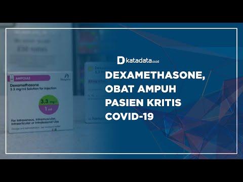 Dexamethasone, Obat Ampuh Pasien Kritis Covid-19 | Katadata Indonesia