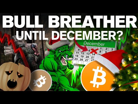 Here's Why BITCOINs BullRun Won't Come Until December!!