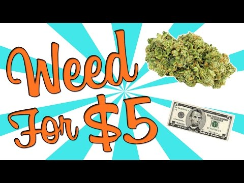 I BOUGHT WEED FOR $5