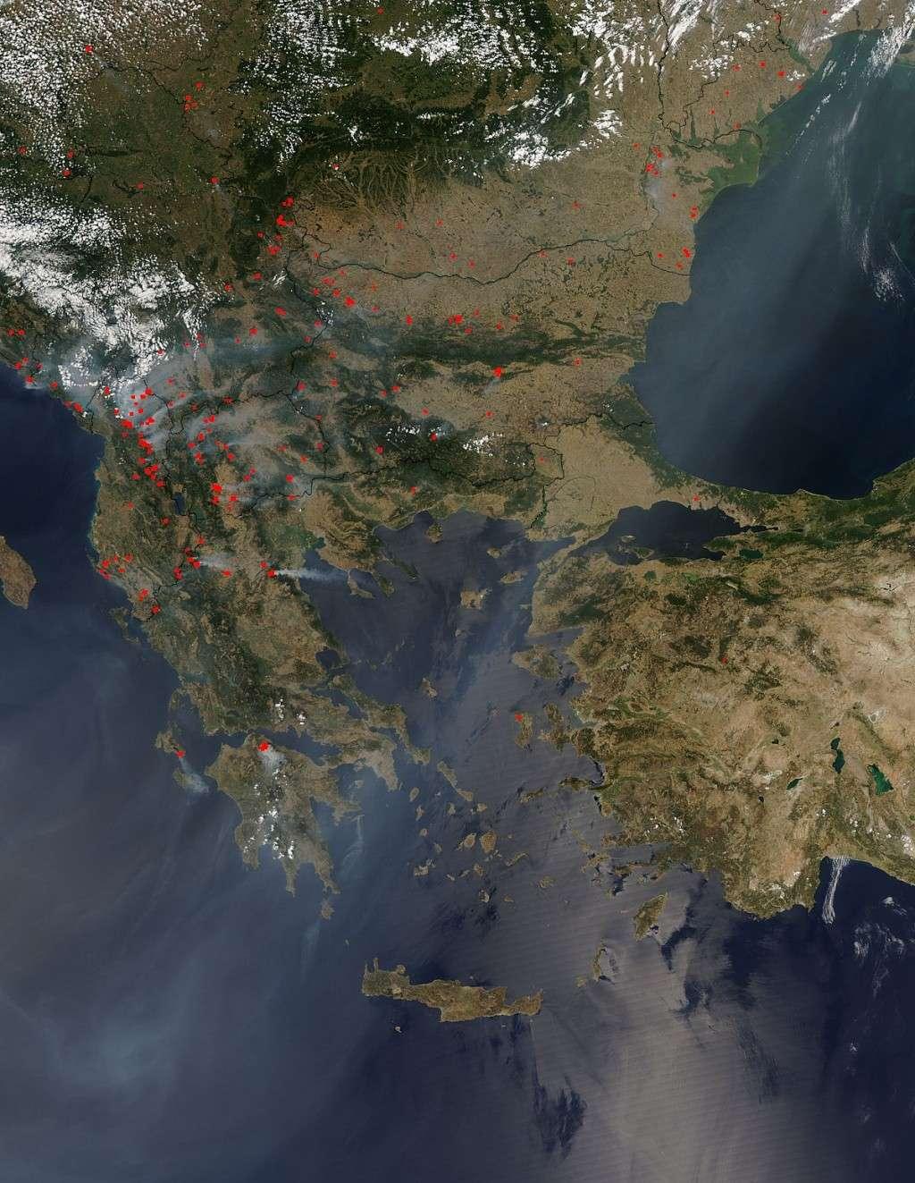 ard Balcanii