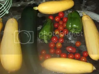 zuchinnis and squash and tomatoes, oh my!