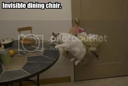 invisible-dining-chair