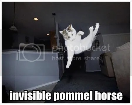 invisible-pommel-horse