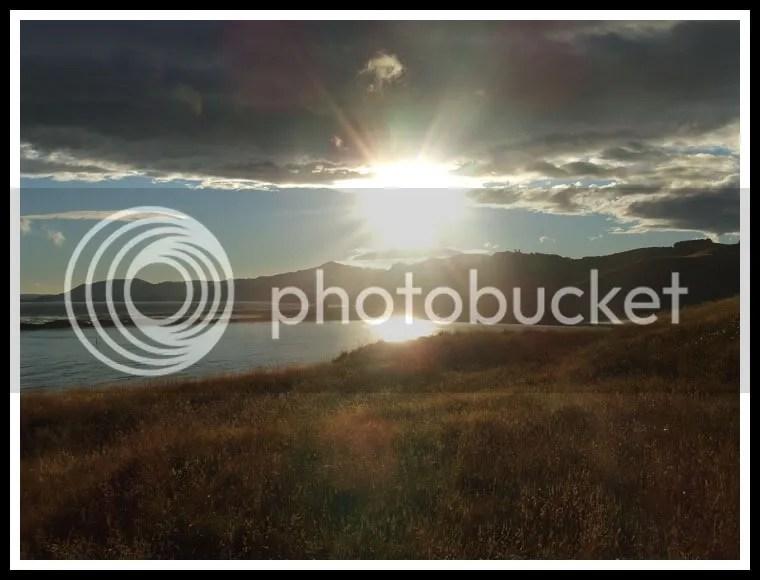 New Zealand - Otago Peninsula