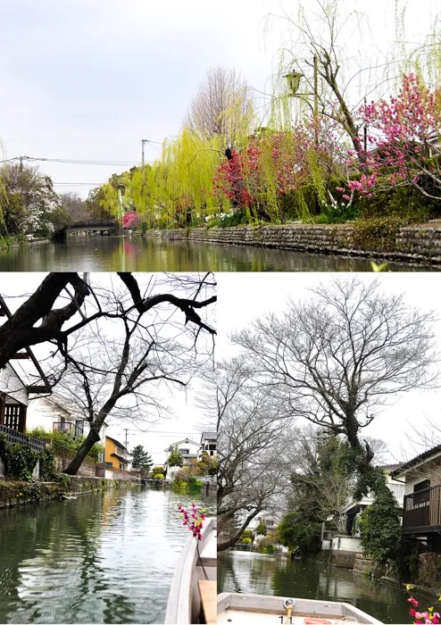 photo Yanagawa4-140405-v2__zps9f5ce421.jpg
