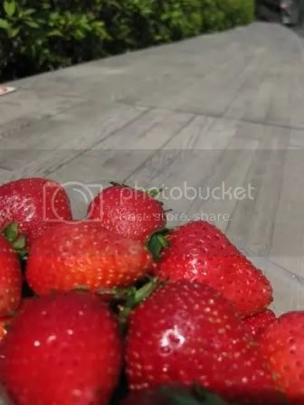 japanese strawberries
