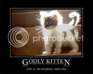 godlykittenxe9.jpg I know it! Kitty is god picture by Kanti-kun