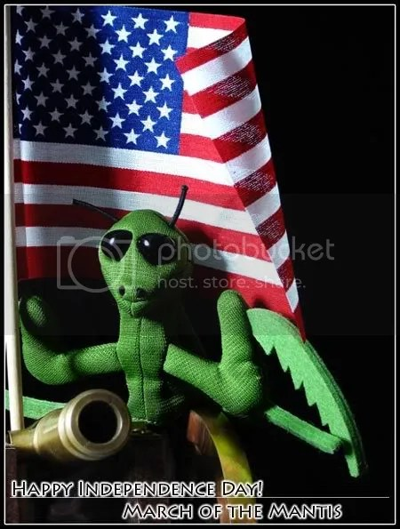 Praying Mantis with the American Flag