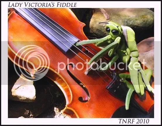 Mantis on the move Victoria's Fiddle