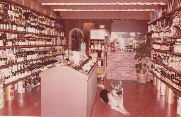photo Sydenham Cellars 1983.jpeg