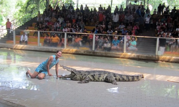 Close to a crocodile