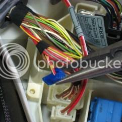 Bmw E46 Ecu Wiring Diagram Sundew Plant Diy Predator Chromium Install Guide Pre 04 Plus