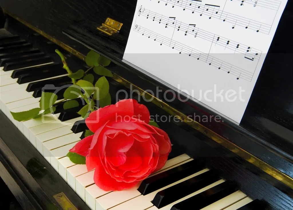 Rose on the piano photo Roseonthepiano_zpsfuzynqky.jpg