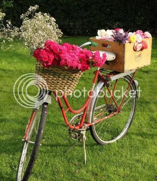photo flowerbike22_zps911912f2.jpg