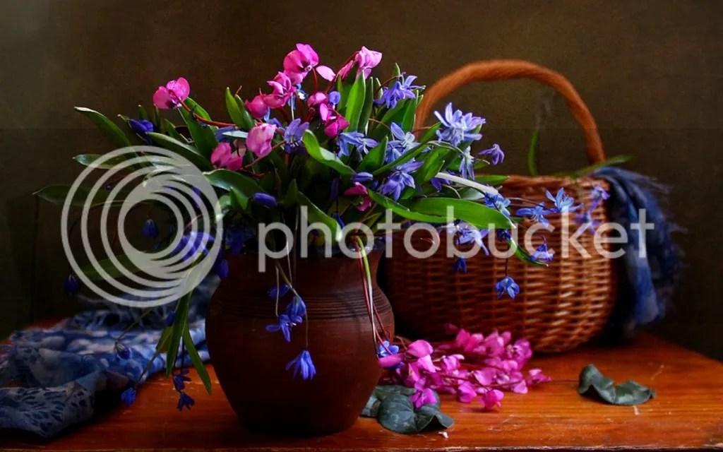 photo Special Vase 3_zps0n3sbqd9.jpg