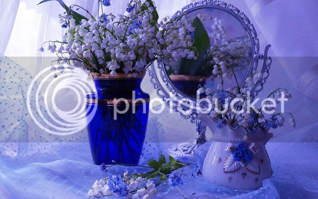 photo Vase 8_zpsvp9qlsbb.jpg