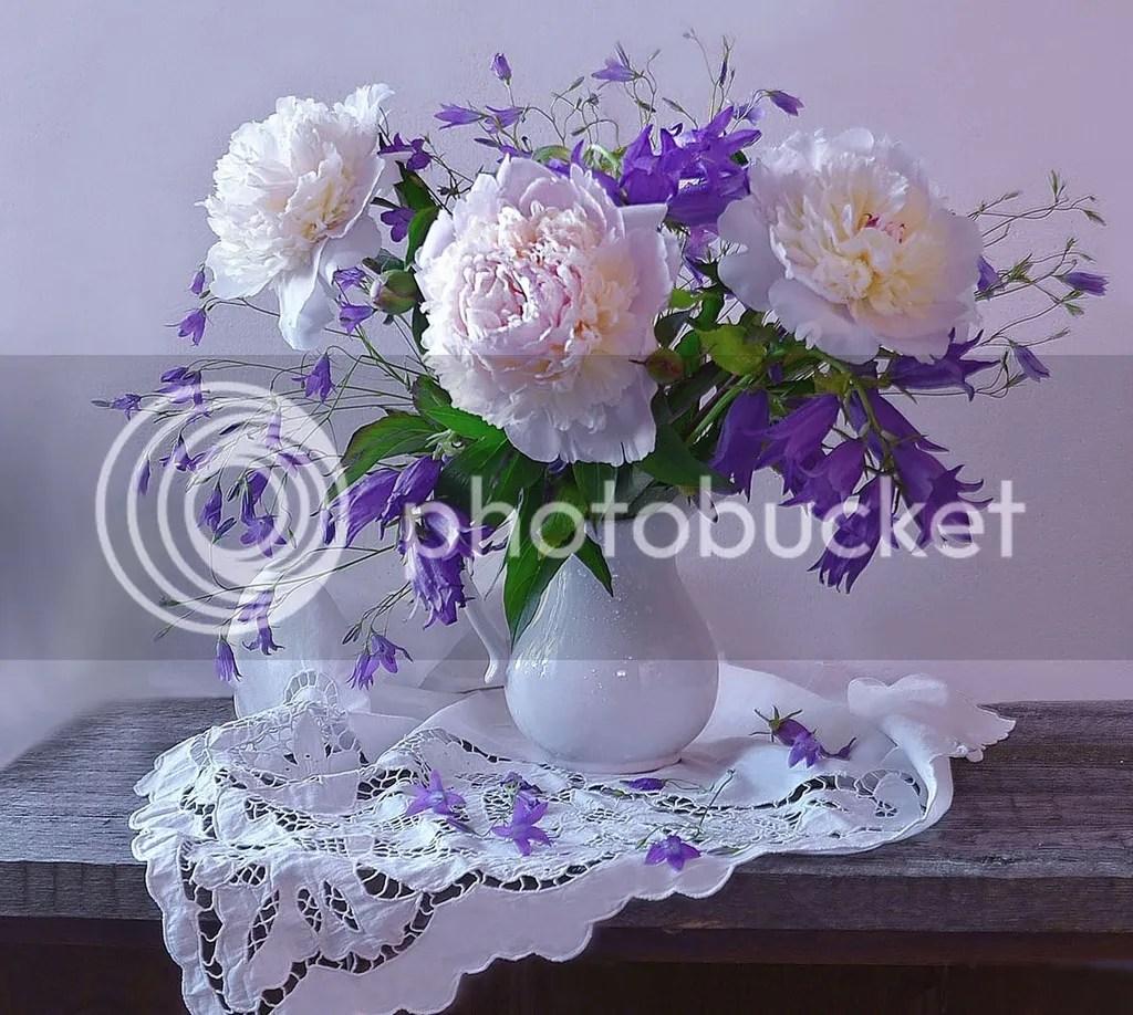 photo Vase of Peonies_zpsqxfty48u.jpg