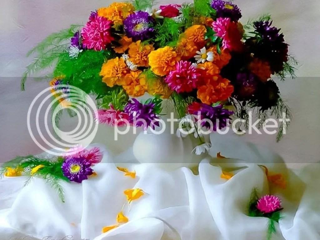 photo Vase2_zpsgu9p6gfw.jpg